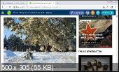 Iridium Browser 2018.11 Portable