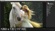 Тонирование в Adobe Camera Raw при помощи пресетов (2018)
