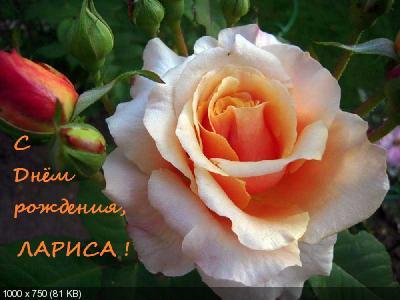 Поздравляем с Днем Рождения Ларису (Лариса) 7d6d494c00d41ff120bece30b19d95c1